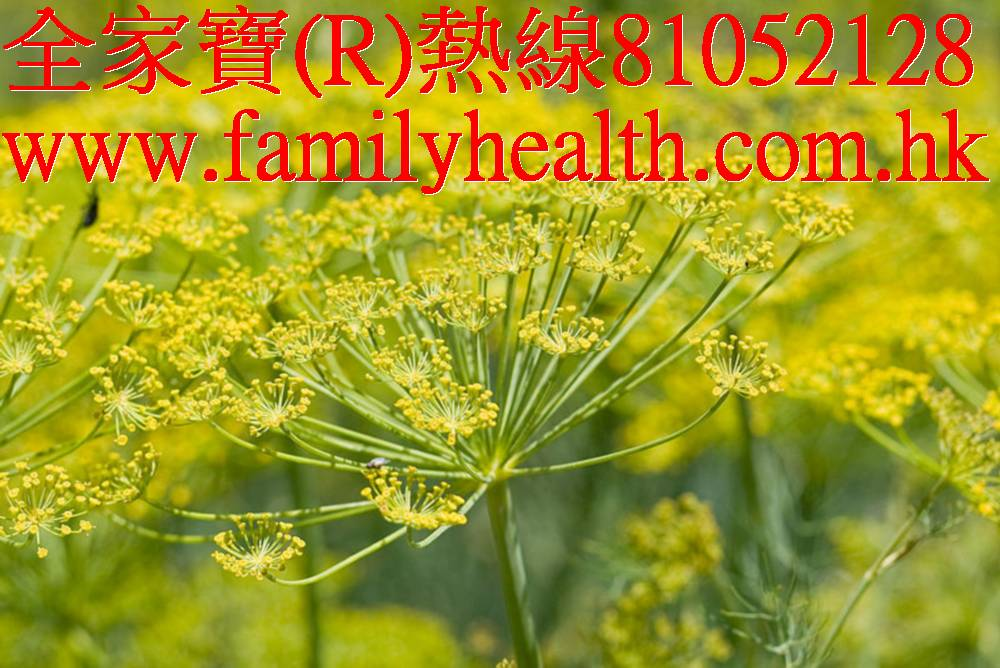http://www.familyhealth.com.hk/files/full/840_3.jpg