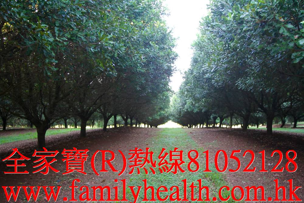 http://www.familyhealth.com.hk/files/full/910_4.jpg